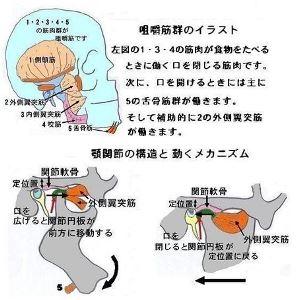 3_4.jpg